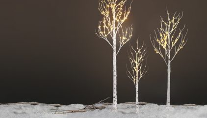 Christmas Decor Series: Christmas Trees Ideas