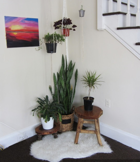 DIY Plant Stand - Decorating With Plants